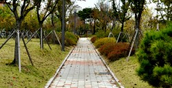 김포 한강중앙공원 시공사진입니다.